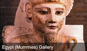 exhibits_egyptmummies