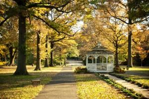 Dockside_Love Your Park Week_Fairmount Park_Gazebo