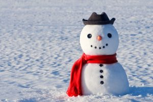 Dockside winters_cute snowman